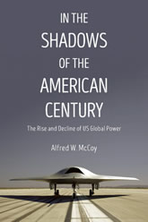 In The Shadows Book Cover