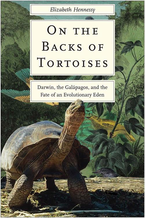 Book Cover: Tortoises