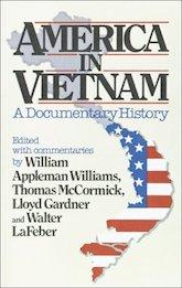 Book Cover: America in Vietnam